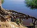 Picture Title - Africa: Obstacle
