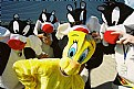 Picture Title - tweety bird and a few cats
