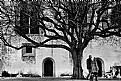 Picture Title - Romantic Sintra