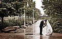 Picture Title - Nice day for a 'wet' wedding