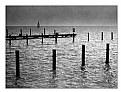 Picture Title - Pier