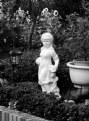 Picture Title - Seen in Gardens II