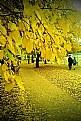 Picture Title - Autumn...