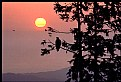Picture Title - Eagle Silhouette at Sunset