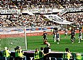 Picture Title - Juventus