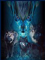Picture Title - Wolf Spirit