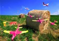 Picture Title - Air attack to hay bales and collateral damages