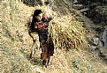 Picture Title - The Village girl from Nepal