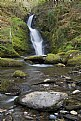 Picture Title - Dolgoch Falls