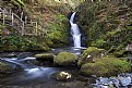 Picture Title - Dolgoch Falls 001