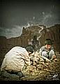 Picture Title - AAlo-e-thai-e-Qoghi