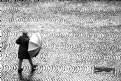 Picture Title - Rain