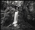 Picture Title - Black Forest waterfall