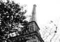 Picture Title - La tour Eiffel