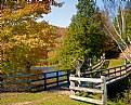 Picture Title - Autumn Scenery