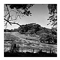 Picture Title - farm landscape