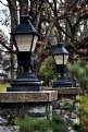 Picture Title - Park lights