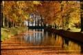 Picture Title - Autumn Colors