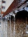 Picture Title - Icicle