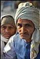 Picture Title - pilgrim