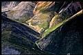 Picture Title - Alpine Meadows