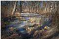 Picture Title - Frozen pond