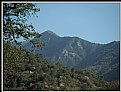 Picture Title - Sequoia National Park