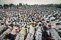 Picture Title - Holy crowd