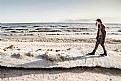 Picture Title - Shoreline
