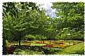 Picture Title - Summer Garden (d6559)