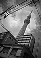 Picture Title - Tokyo Skytree