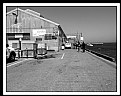 Picture Title - seafoods market