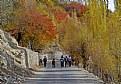 Picture Title - Nagar, Hunza Valley