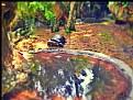 Picture Title - Ninja turtle
