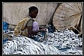 Picture Title - The Dry Fish Market