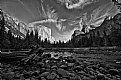Picture Title - Yosemite
