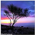 Madaba sunset