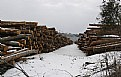 Picture Title - Logs