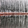 Picture Title - Winter Reflections