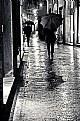 Picture Title - Una giornata di pioggia