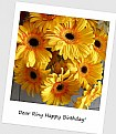 Picture Title - for Riny Koopman on his birthday