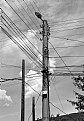 Picture Title - busy pole