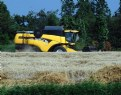Picture Title - wheat harvest New Holland CX720