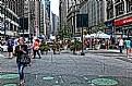 Picture Title - Herald Square