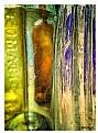 Picture Title - Glasslight