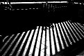 Picture Title - Barrotes. Bars