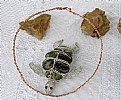 Picture Title - Turtle Necklace