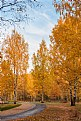 Picture Title - Autumn colors