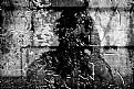 Picture Title - A.U. Autoportret Uniwersalny. Portrait of a universal