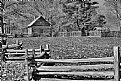 Picture Title - The Puckett Cabin